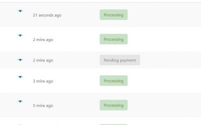 Dealing With High Volume WooCommerce Stores